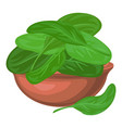spinach leaf in bowl icon cartoon style vector image vector image