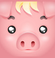 square cute swine pig cartoon character design vector image