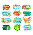 summer sale offerings set vector image vector image