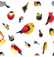 bird different types of animals bullfinch pattern vector image