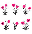 set of pink flowers bouquets of pink flowers vector image