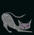 silver cat with violet eyes vector image vector image