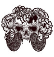 with a human skull with tusks vector image vector image