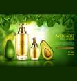 avocado cosmetics oil natural skin care cosmetic vector image