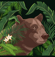bear in the jungle vector image vector image