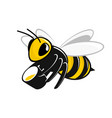 bee with a bucket of honey vector image vector image