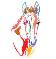 colorful decorative horse 7 vector image vector image