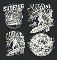 hawaii surfing vintage monochrome labels vector image vector image