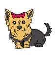 terrier cartoon hand drawn image vector image vector image