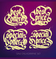 typographical sale lettering set vector image