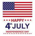 usa happy independence day vector image