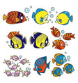 cartoon fun sea fishes set color on a white vector image vector image