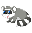 raccoon cartoon for you design vector image vector image