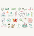 set beauty badges and elements vector image vector image