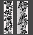 vine border lace seamless pattern vector image vector image