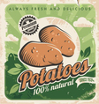 Vintage poster template for potato farm vector image vector image
