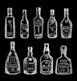 hand drawn of different bottles vector image