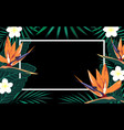 tropical background with frame vector image