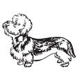 decorative portrait of dog dandie dinmont terrier vector image vector image