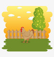 farm animal icon vector image