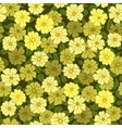 flower field seamless pattern vector image vector image