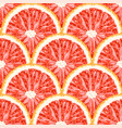 seamless pattern of grapefruit citrus background vector image vector image