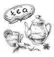 tea collection elements vector image vector image