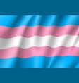 transgender symbol movement lgbt flat icon vector image vector image