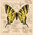 banner with drawing a swallowtail butterfly vector image vector image