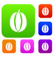 durian set collection vector image vector image