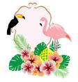 flamingo toucan vector image vector image