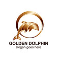 golden dolphin logo design template vector image
