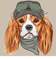Hipster red dog Cavalier King Charles Spaniel vector image vector image