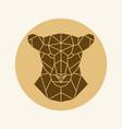 polygonal lioness head vector image vector image