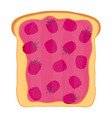 raspberry jam on toast with jelly flat style vector image vector image