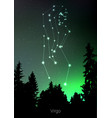 virgo zodiac constellations sign with forest vector image vector image