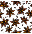 anise star seed and cloves seamless endless vector image