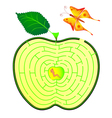 Apple maze vector image vector image
