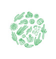 hand drawn desert cacti plants in circle vector image vector image