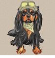 Hipster black dog Cavalier King Charles Spaniel vector image vector image