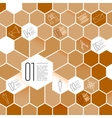 Honeycomb Infographic Design Elements with Icon vector image