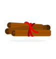 pieces cinnamon tied with a rope flat isolated vector image