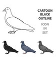 pigeon icon in cartoon style isolated on white vector image vector image