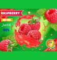 raspberry juice package design with juice splash vector image