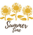 summer time sunflowers vector image