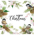 winter christmas birds greeting card vector image vector image