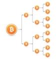 Bitcoin organization tree chart vector image vector image