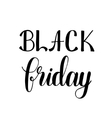 Black friday Brush hand lettering vector image