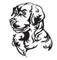 decorative portrait of dog golden retriever vector image