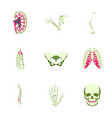 icons set in flat style human bones vector image vector image